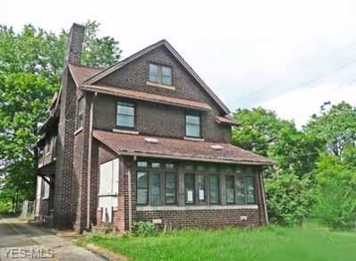 136 Broadway Avenue, Youngstown, OH 44505 - #: 4118803