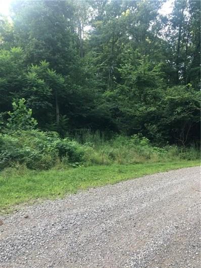 0 Township Road 218 Road, Hammondsville, OH 43932 - #: 4119420