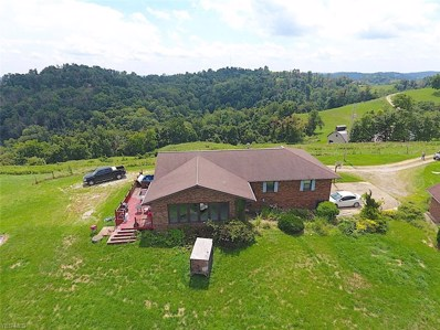 50020 Baptist Ridge, Sardis, OH 43946 - #: 4121397