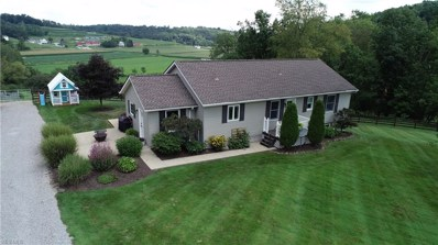 2375 Township Road 415, Dundee, OH 44624 - #: 4122172