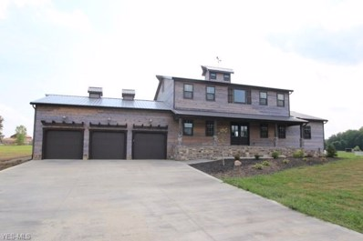 4960 Township Road 211, Marengo, OH 43334 - #: 4123163