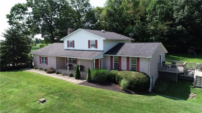 14001 Dover Road, Apple Creek, OH 44606 - #: 4124325