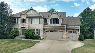 11471 Viceroy Street, Concord, OH 44077 - #: 4125166