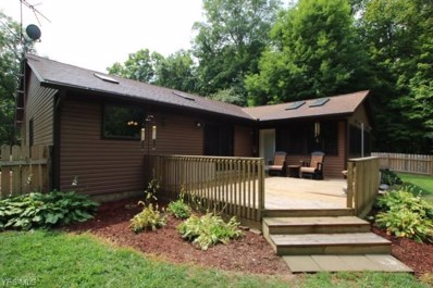 4179 Township Road 21, Marengo, OH 43334 - #: 4128361