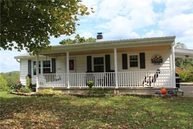 43000 Tabor Ridge Road, Summerfield, OH 43788 - #: 4132200