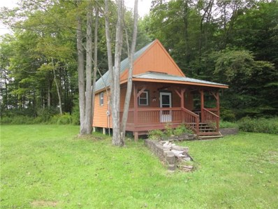 4001 Mann Road, Andover, OH 44003 - #: 4132761