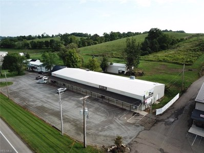 2433 State Route 39, Walnut Creek, OH 44681 - #: 4135700