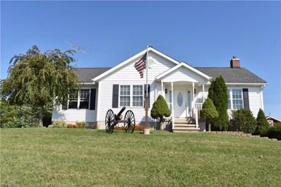 3941 Mann Road, Andover, OH 44003 - #: 4135730