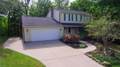 9990 Cottonwood Court, Concord, OH 44060 - #: 4139156