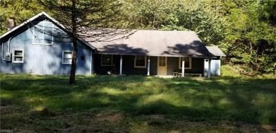 41128 Schindler Road, Graysville, OH 45734 - #: 4141296