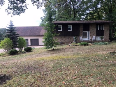 9530 Whippoorwill Road, Diamond, OH 44412 - #: 4143183