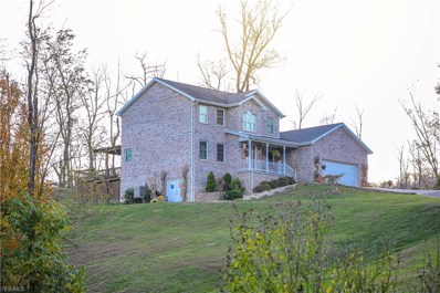 422 Woodland Drive, Shadyside, OH 43947 - #: 4144342