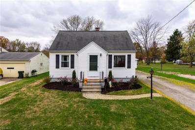 218 Maple Street, South Amherst, OH 44001 - #: 4146864