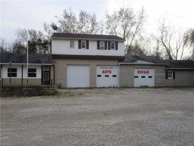 51978 State Route 145, Beallsville, OH 43716 - #: 4147983
