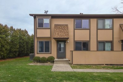 35293 S Turtle Trail UNIT 39D, Willoughby, OH 44094 - #: 4151498