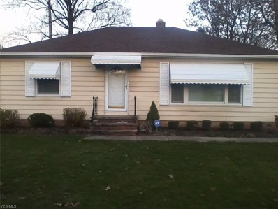 1641 Woodrow Avenue, Mayfield Heights, OH 44124 - #: 4158878