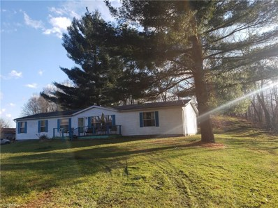 39200 Plainview Road, Woodsfield, OH 43793 - #: 4159443