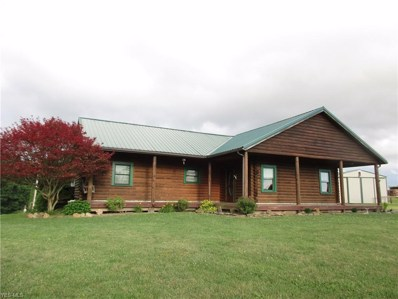 55 Griffin Road, Lowell, OH 45744 - #: 4159768