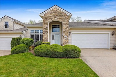 165 Stonecreek Drive, Mayfield Heights, OH 44143 - #: 4161139