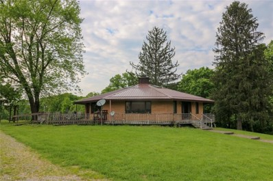 538 State Route 371, McDermott, OH 45652 - #: 4167481