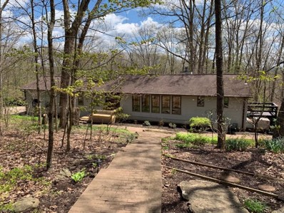 417 Timberline Drive, Vincent, OH 45784 - #: 4167765