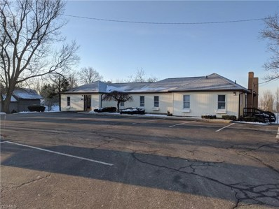 2962 State Route 39, Millersburg, OH 44654 - #: 4168252