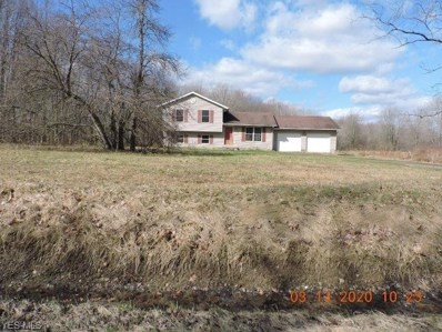 5509 State Route 193, Andover, OH 44003 - #: 4175318