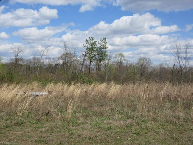 Summit Tract A Road, Bidwell, OH 45686 - #: 4185802
