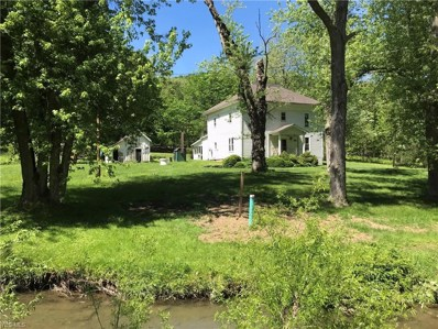 11768 State Route 43, Amsterdam, OH 43903 - #: 4193373
