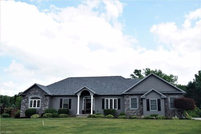 1368 Countryside Drive, Mogadore, OH 44260 - #: 4200267