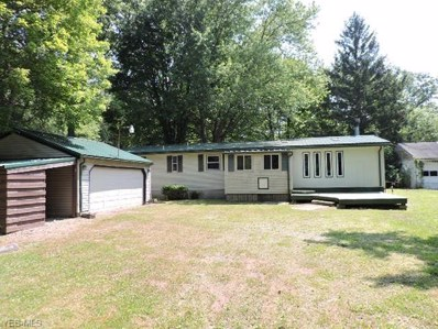 1344 State Route 7 NE, Brookfield, OH 44403 - #: 4204673