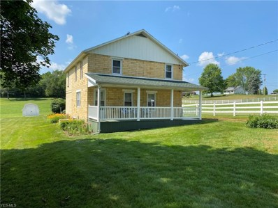 11604 8th St Extension SW, Wilmot, OH 44689 - #: 4207934
