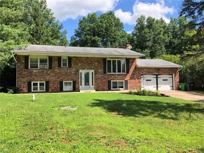 87 Whaley Road, Peninsula, OH 44264 - #: 4212074