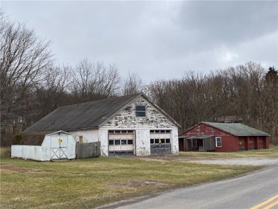 49449 Calcutta Smithferry Road, East Liverpool, OH 43920 - #: 4212235