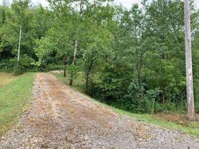Flushing Waterworks (Lot 5) Road, Flushing, OH 43977 - #: 4219437