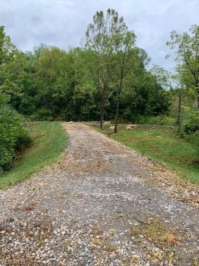 Flushing Waterworks (Lot 6) Road, Flushing, OH 43977 - #: 4219455