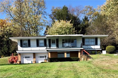 310 Taylor Avenue, Wellsville, OH 43968 - #: 4224625