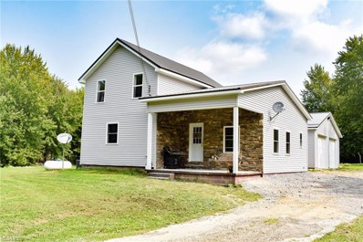 6472 State Route 46, Rome, OH 44085 - #: 4224993