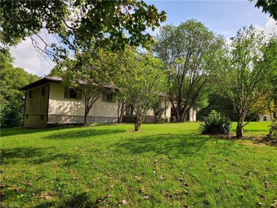 870 Plantsville Road, Chesterhill, OH 43728 - #: 4226304