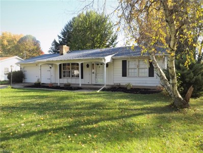 11375 Indian Hollow Road, Grafton, OH 44044 - #: 4235054