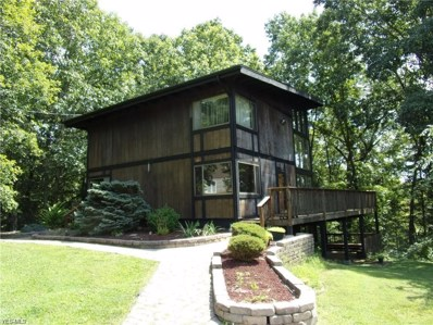 75 Northlake Court, Vincent, OH 45784 - #: 4239305