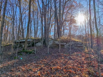 Smith Run Road, Glouster, OH 45732 - #: 4242565