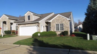 439 Creekside Drive, Mayfield Heights, OH 44143 - #: 4243978