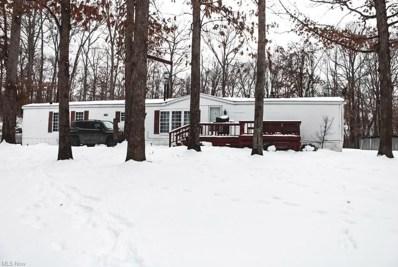 33073 Willard, Hanoverton, OH 44423 - #: 4255953