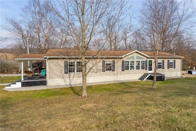 13402 State Route 644, Hanoverton, OH 44423 - #: 4260953