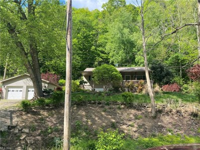 52772 Fisher Hill Road, Clarington, OH 43915 - #: 4279941