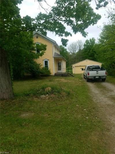 2682 E Water Street, Rock Creek, OH 44084 - #: 4281761
