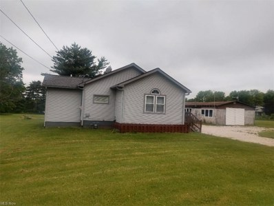 1114 State Route 7, Brookfield, OH 44438 - #: 4282084