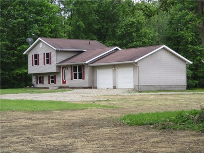 5509 State Route 193, Andover, OH 44003 - #: 4287816