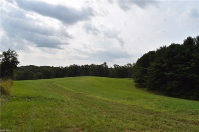 Township Road 289, Irondale, OH 43932 - #: 4308120